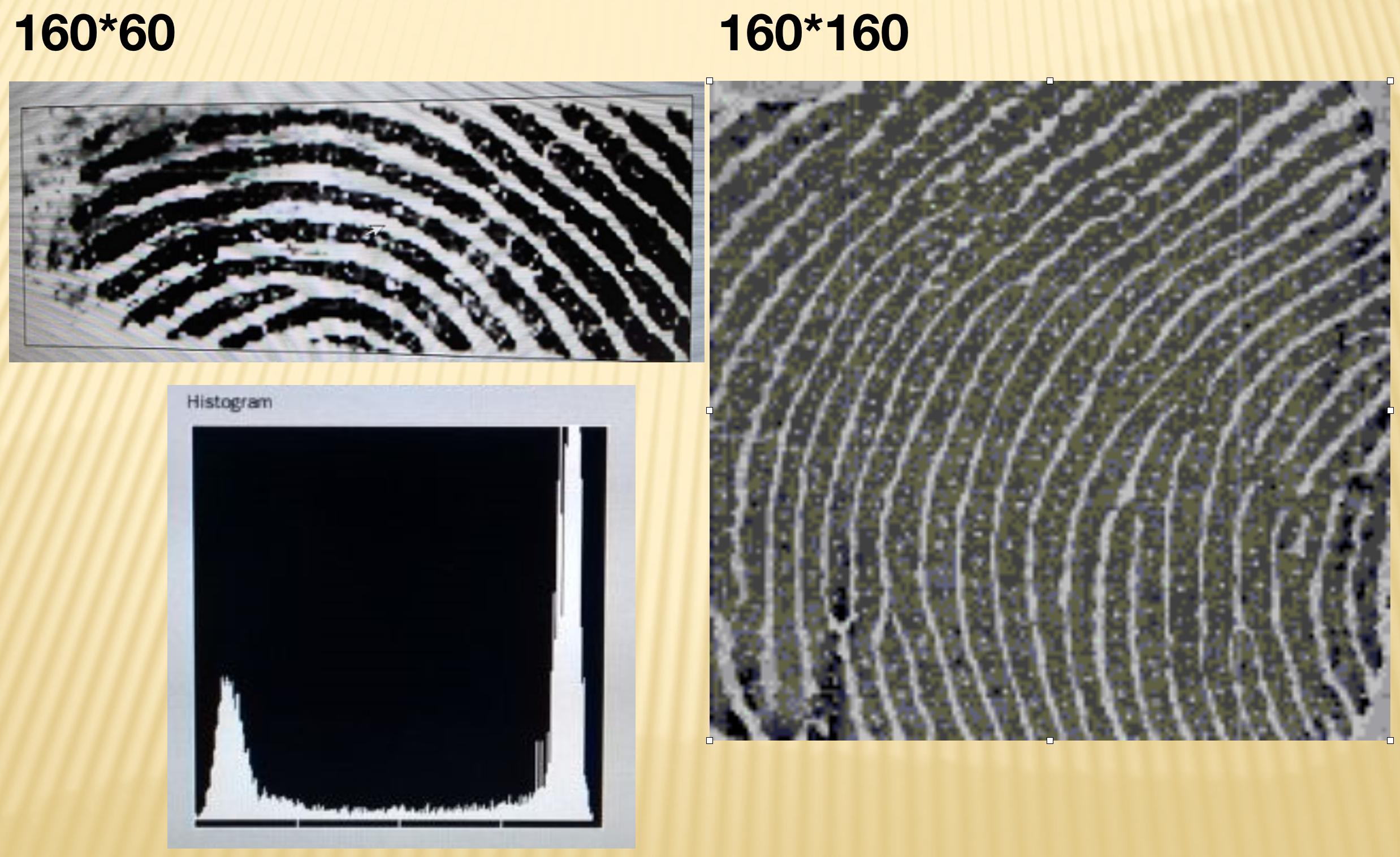 指紋IC 設計